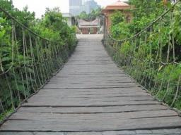 cultural bridge